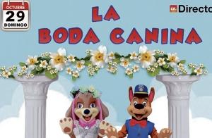 'La Boda Canina' llega a Santutxu