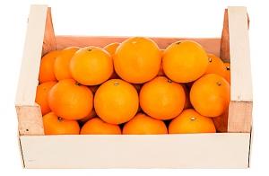 Caja de naranjas Navelina de 15 Kg