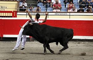 http://oferplan-imagenes.elcorreo.com/sized/images/Oferplan_recortadores11-300x196.jpg