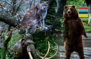 http://oferplan-imagenes.elcorreo.com/sized/images/animales-300x196.jpg
