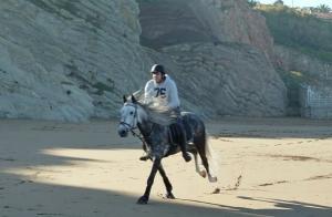 Paseo o ruta a caballo en Barrika